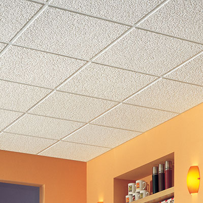 Ceiling Tiles Drop Panels The