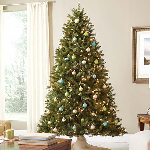 Find All Types Of Christmas Trees At The Home Depot - Christmas Tree Augusta Maine
