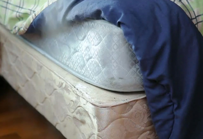 How to get rid of bed bugs at the home depot for How do i prevent bed bugs