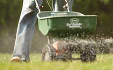 Get Ready for Spring with Lawn Maintenance