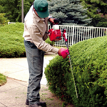 "Gas Hedge Trimmer 30"" Rental - The Home Depot"